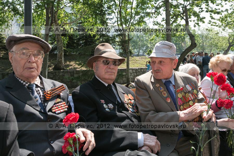 Фотография: ветераны. 22 июня — День памяти и скорби. Сквер Свободы, город Петропавловск-Камчатский