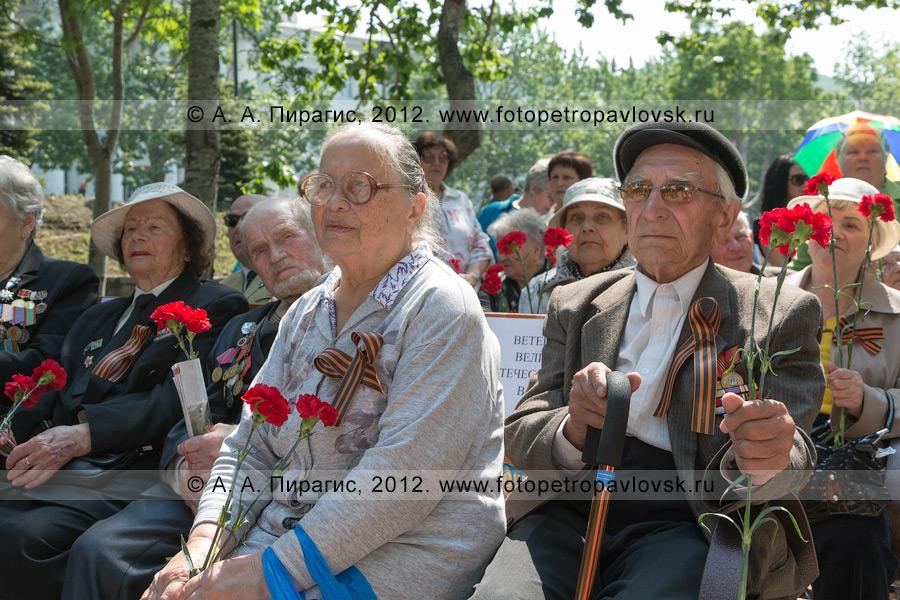 Фотография: ветераны. День памяти и скорби. Сквер Свободы, город Петропавловск-Камчатский
