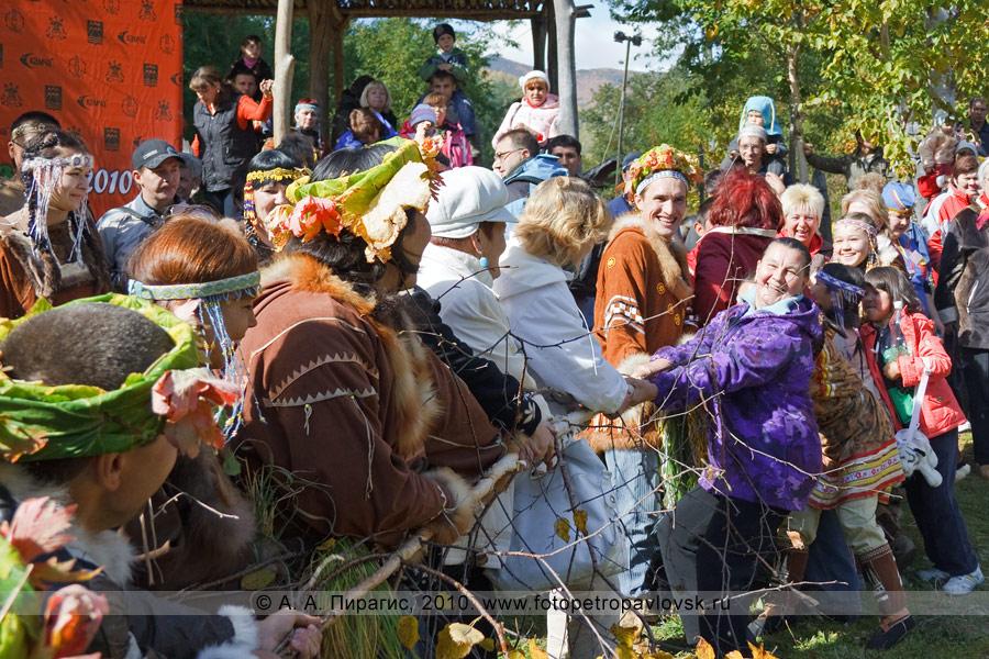 """Фотография: перетягивание березы. Ительменский обряд очищения. Праздник """"Алхалалалай"""" на Камчатке"""