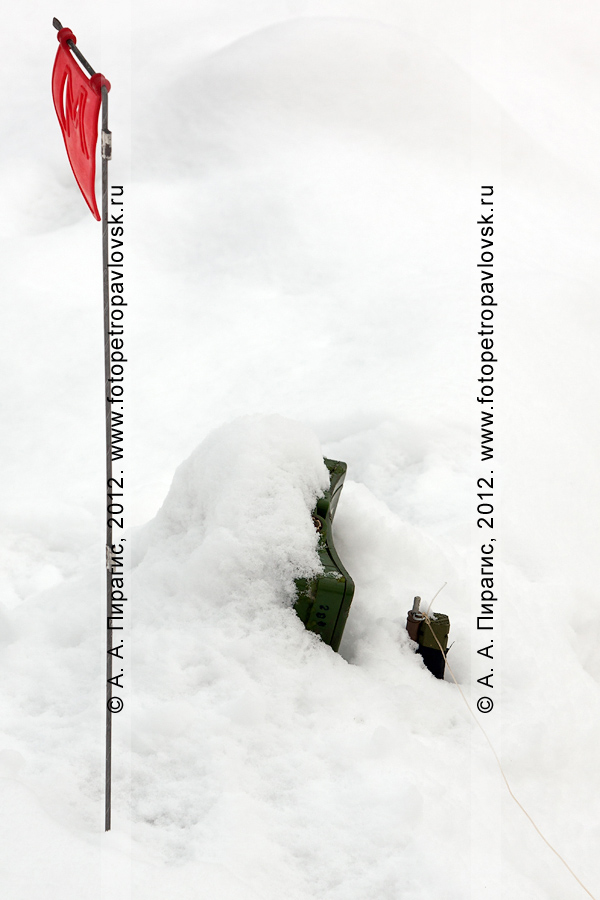 Фотография: взрывное устройство (растяжка), найденное в районе место происшествия. Антитеррористические учения по пресечению теракта на объекте массового пребывания людей. Камчатский край, город Петропавловск-Камчатский