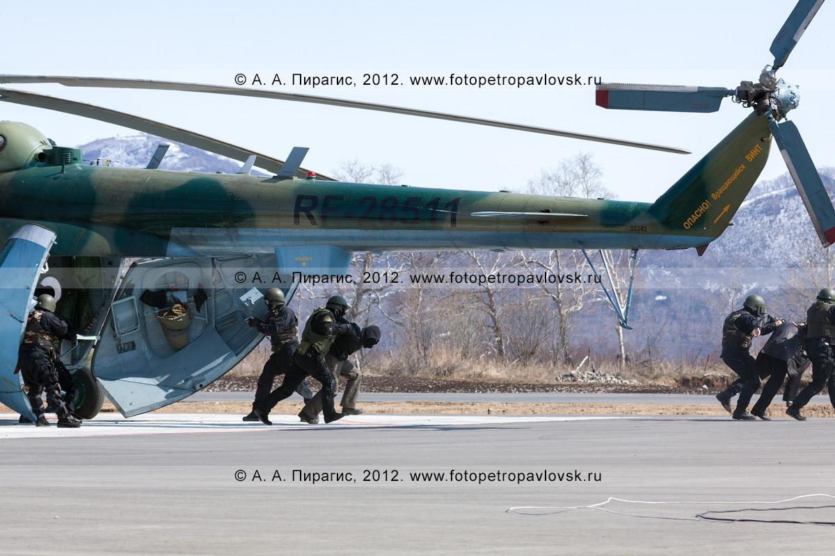 Фотография: спецназ выводит обезоруженных террористов из освобожденного вертолета. Контртеррористические учения по пресечению теракта на объекте воздушного транспорта