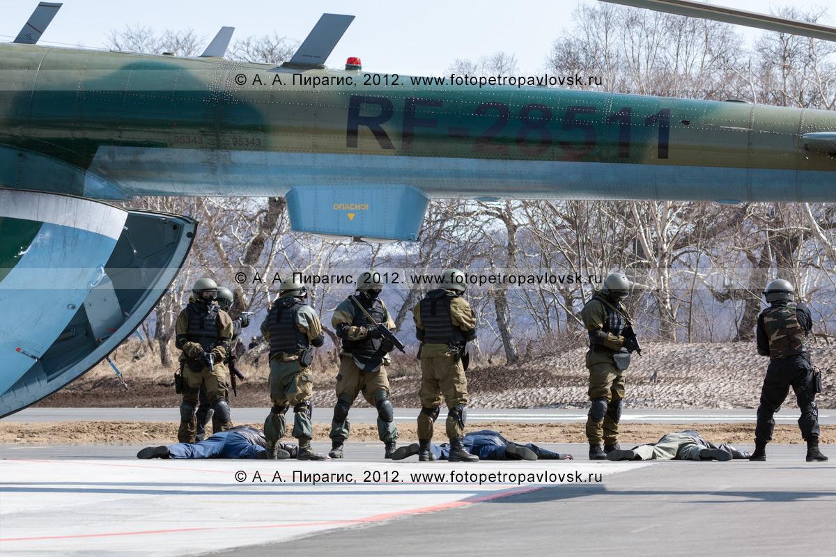Фотография: заложники и вертолет освобождены от захвата террористами. Разоруженная, обездвиженная и деморализованная группа террористов лежит возле вертолета под охраной бойцов спецназа. Контртеррористические учения по пресечению теракта на объекте воздушного транспорта