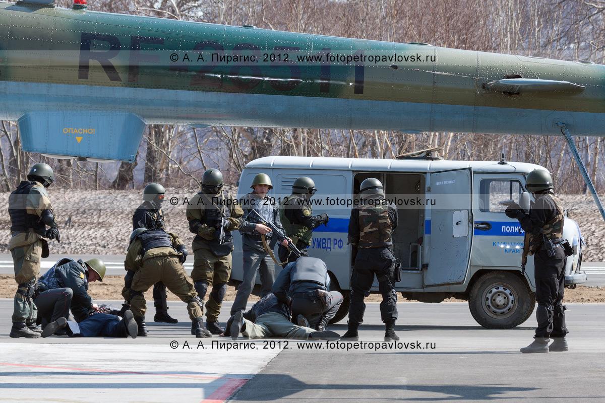 Фотография: прибывший к освобожденному бойцами спецназа вертолету наряд полиции досматривает террористов. Контртеррористические учения по пресечению теракта на объекте воздушного транспорта