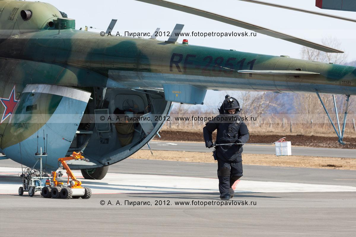 Фотография: специалист-подрывник (сапер) в защитном бронированном костюме, с помощью манипулятора несет бомбу (взрывное устройство) до места ее уничтожения. Контртеррористические учения по пресечению теракта на объекте воздушного транспорта