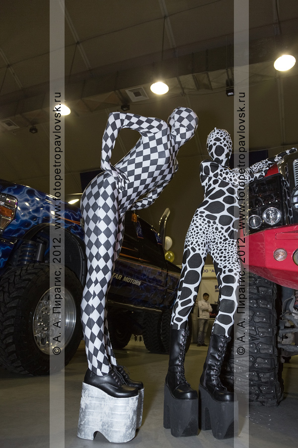 """Фотография: выставка раритетных и эксклюзивных автомобилей. """"Роллердром"""", Петропавловск-Камчатский"""