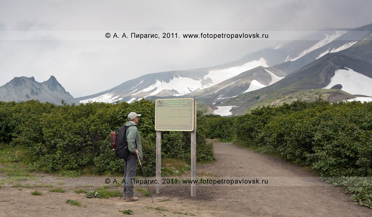 Фотография: Авачинский перевал, начало туристического маршрута на вершину Авачинского вулкана — действующего вулкана Камчатки