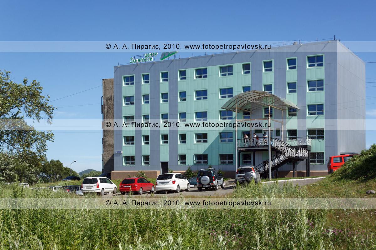 Новости п. шексна вологодской области