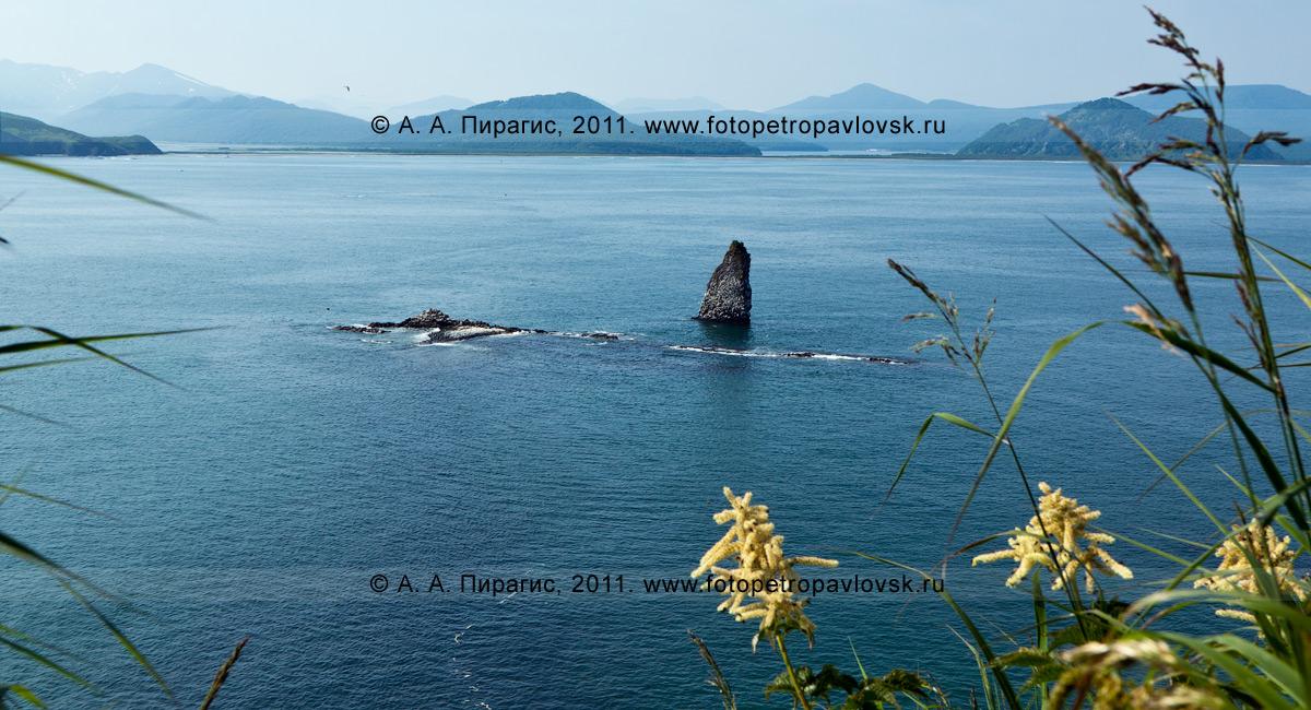 Фотография: кекур Часовой, вид с вершины острова Старичков. Авачинский залив, Тихий океан