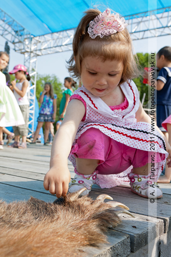 Фотография: маленькая девочка удивляется огромным когтям камчатского бурого медведя. День аборигена на Камчатке