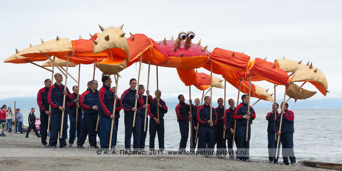 Фотография: камчатский краб, или королевский краб, или красный королевский краб, или гигантский камчатский краб. День рыбака на Камчатке