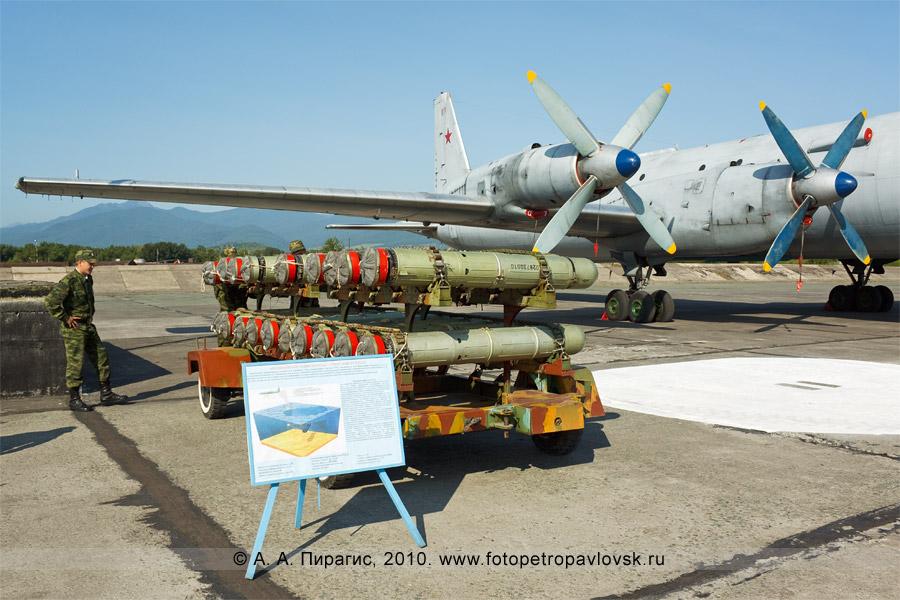 Фотография: День Военно-воздушных сил на Камчатке — авиационный радиогидроакустический буй пассивного типа направленного действия РГБ-2 для обнаружения подводных лодок противника