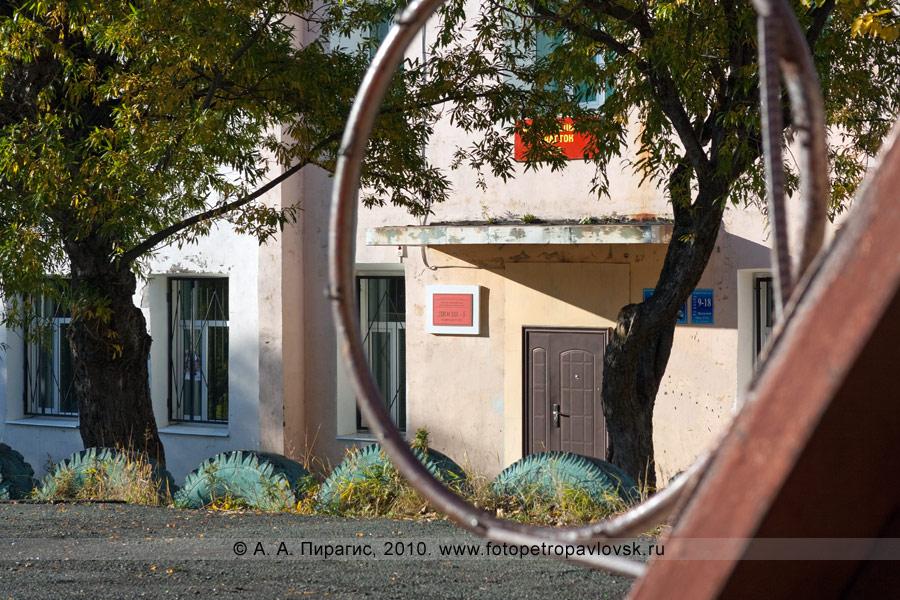 Фотография: вход в здание детско-юношеской спортивной школы (ДЮСШ) № 5 единоборства Петропавловск-Камчатского городского округа (вид через баскетбольное кольцо)