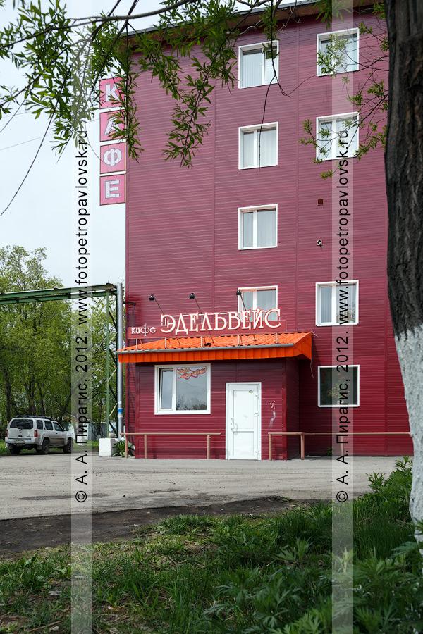 """Фотография: кафе """"Эдельвейс"""" в столице Камчатского края"""