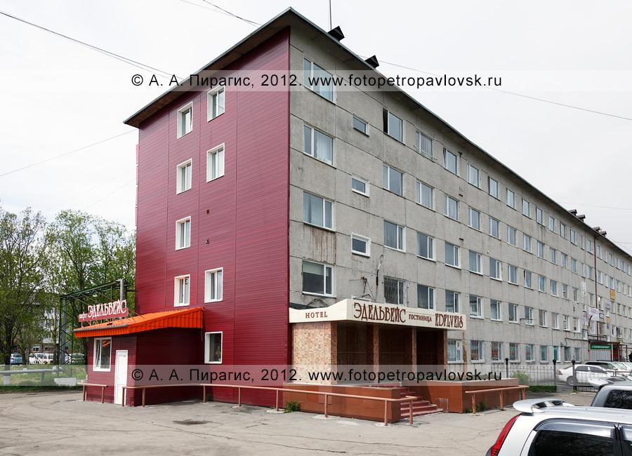 """Фотография: гостиница """"Эдельвейс"""" (hotel """"Edelveis"""") в городе Петропавловске-Камчатском"""