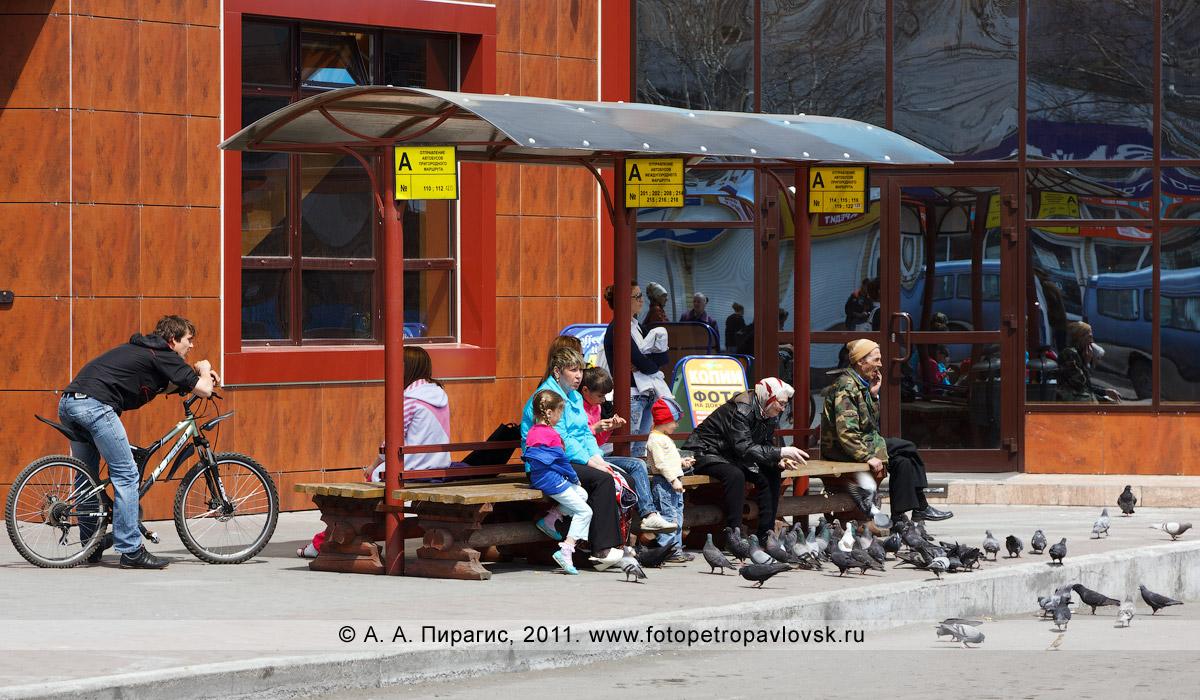 Фотография: автобусная остановка на автовокзале в городе Елизово Камчатского края. С автобусной остановки отправляются автобусы междугородних маршрутов и автобусы пригородных маршрутов