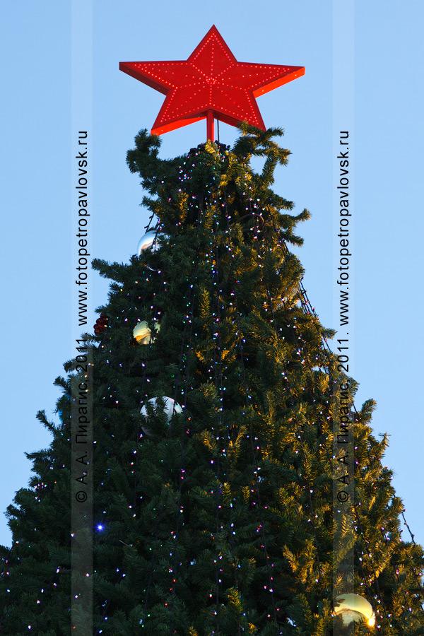 Фотография: красная пятиконечная звезда на макушке новогодней елки. Камчатский край, город Петропавловск-Камчатский