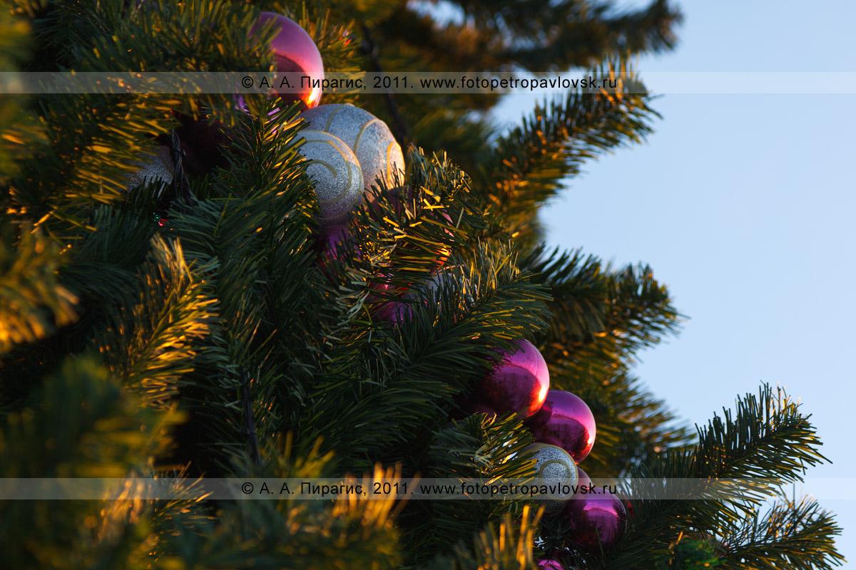 Фотография: елочные игрушки на новогодней елке. Петропавловск-Камчатский