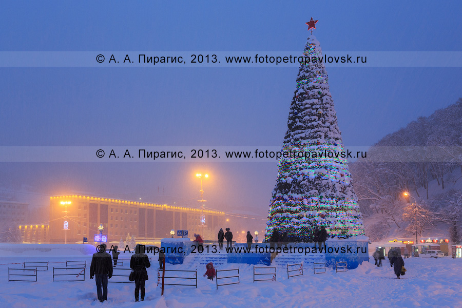 Фотография: главная новогодняя елка Камчатки. Петропавловск-Камчатский