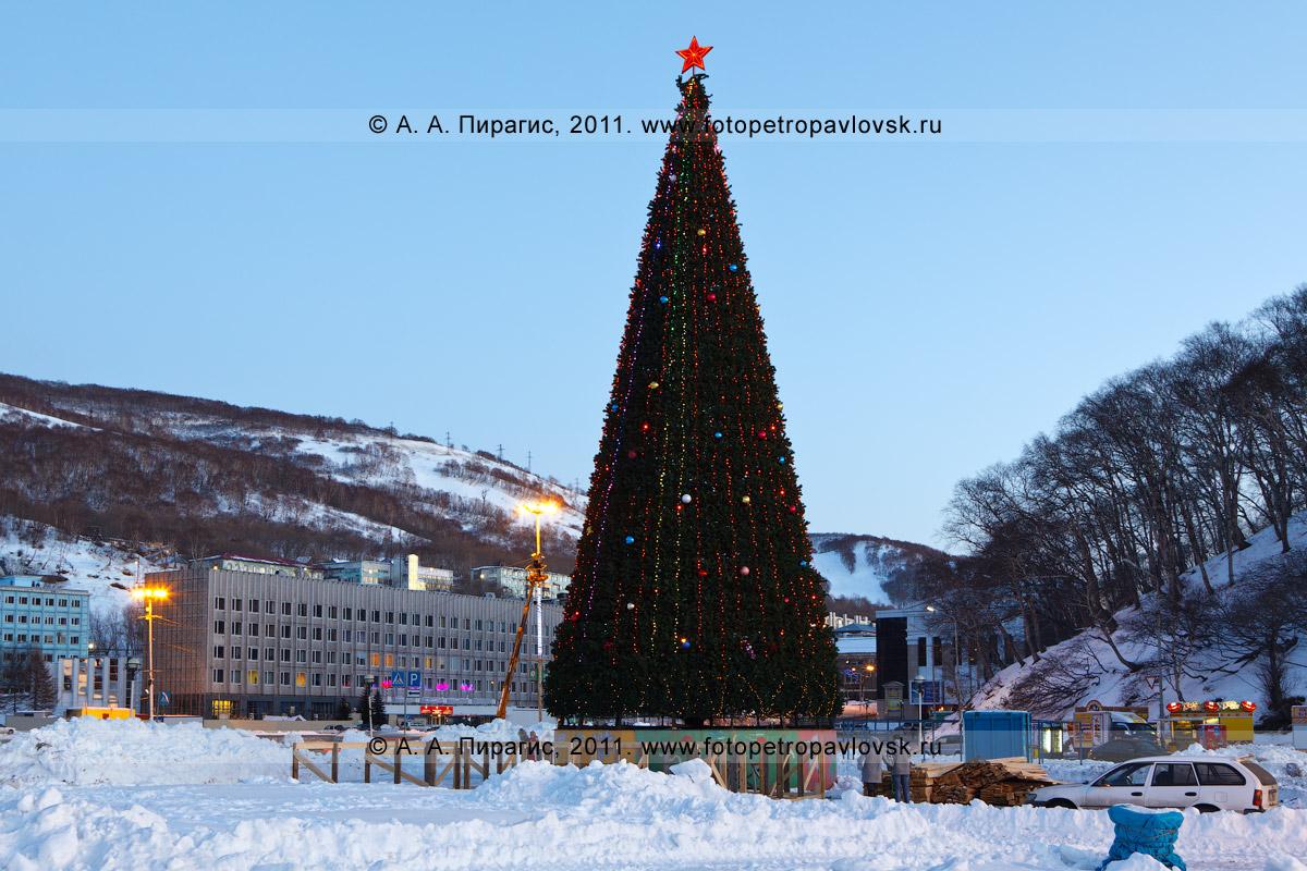 Фотография: главная новогодняя елка Камчатского края. Центр города Петропавловска-Камчатского. На заднем плане: здание Правительства Камчатского края