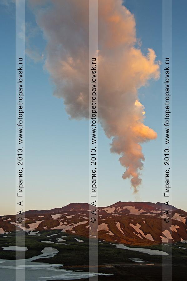 Фотография: действующий вулкан Горелый на Камчатке. Парогазовый выброс одного из кратеров вулкана Горелого. Фотография сделана на рассвете
