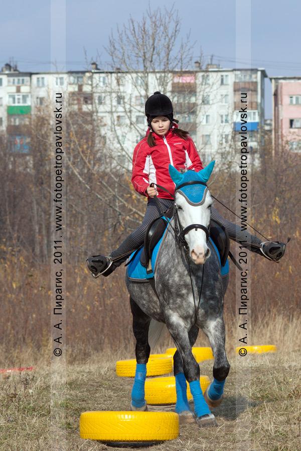 Фотография: соревнования по конному спорту в дисциплине манежная езда. Камчатский край, город Петропавловск-Камчатский