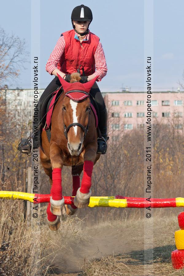 Фотография: красивый прыжок через препятствие. Конный спорт на Камчатке. Плац в столице Камчатского края — городе Петропавловске-Камчатском