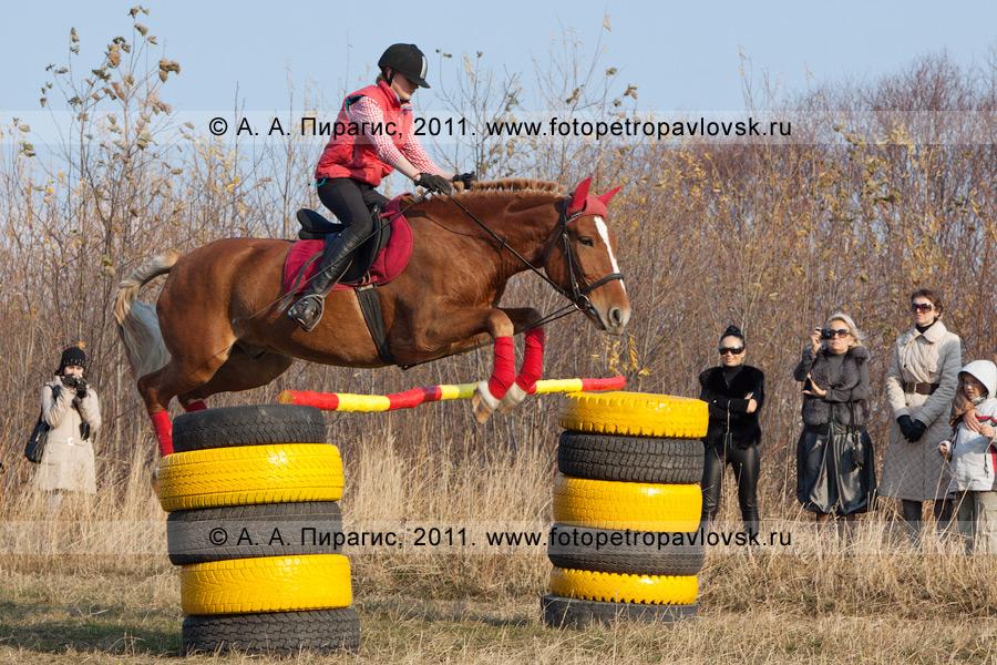 Фотография: конный спорт в Камчатском крае. Прыжок через препятствие. Плац в городе Петропавловске-Камчатском