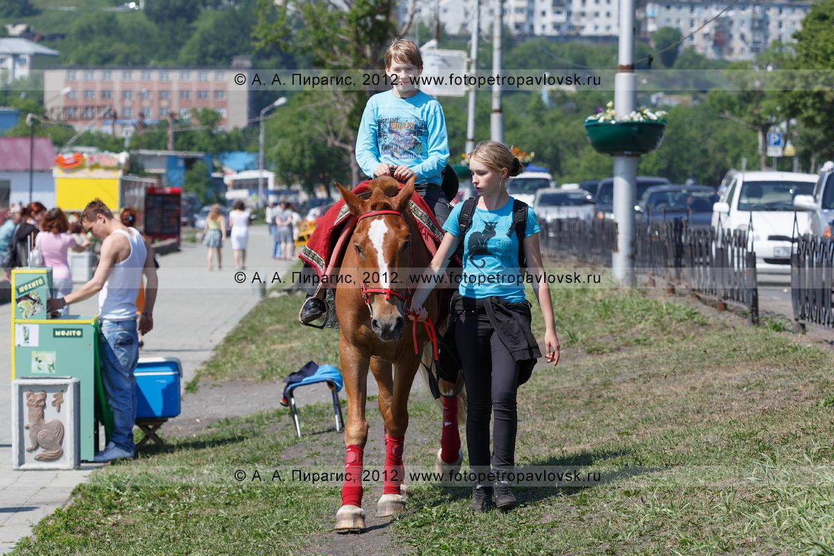 Фотография: конная прогулка по газонам на Озерновской косе. Камчатский край, город Петропавловск-Камчатский