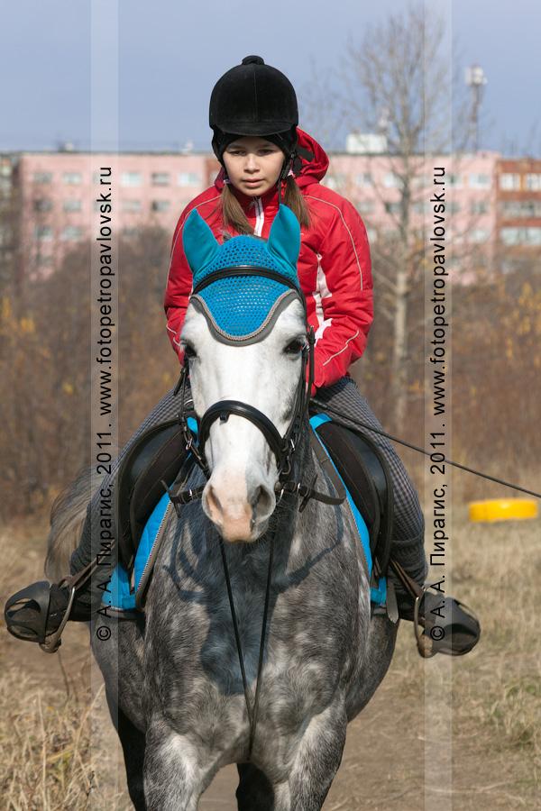 Фотография: соревнования по конному спорту в Камчатском крае в дисциплине манежная езда