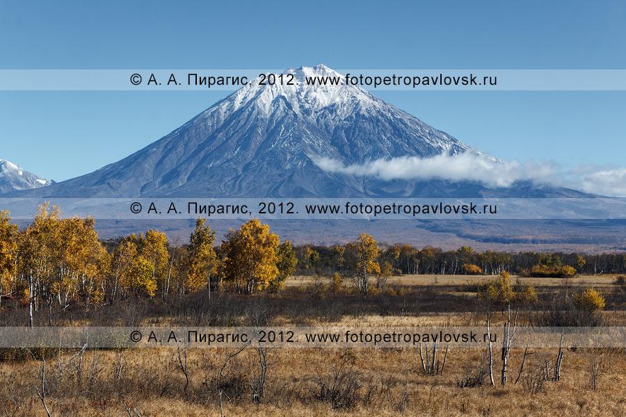 Фотография: осенний камчатский пейзаж, вид на Корякский вулкан (Корякская сопка)
