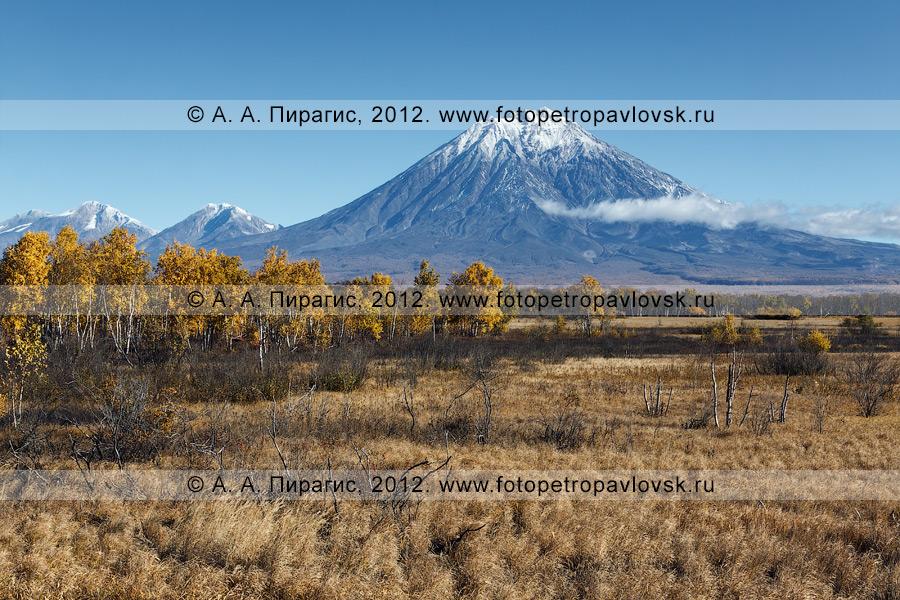 Фотография: камчатский осенний пейзаж, вид на Корякскую сопку (Корякский вулкан)