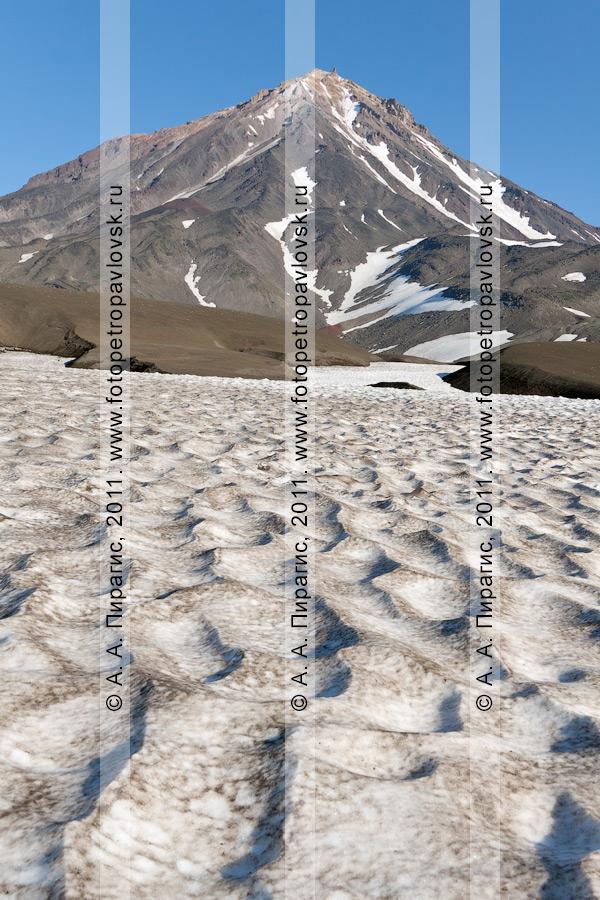 Фотография: пейзаж Камчатки — снежник у подножия Корякского вулкана