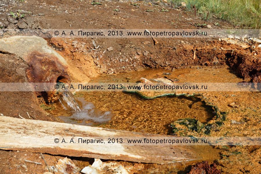 Фотография: Краеведческие горячие источники, Налычевская долина, Камчатка