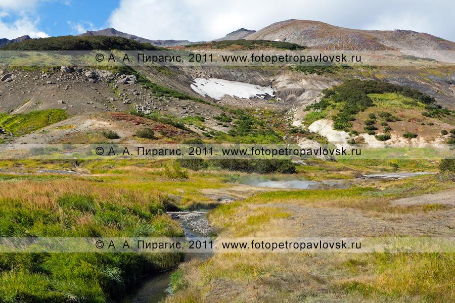 Фотография: Дачные термальные источники на Камчатке. Медвежья группа Дачных термальных источников