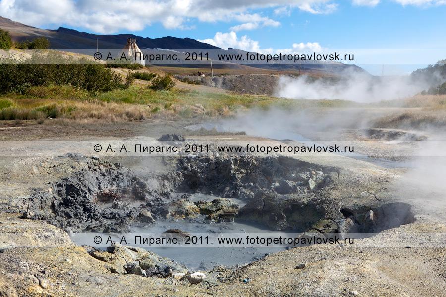 Фотография: котел кипящей голубой глины. Дачные термальные источники на Камчатке, Медвежья группа Дачных термальных источников