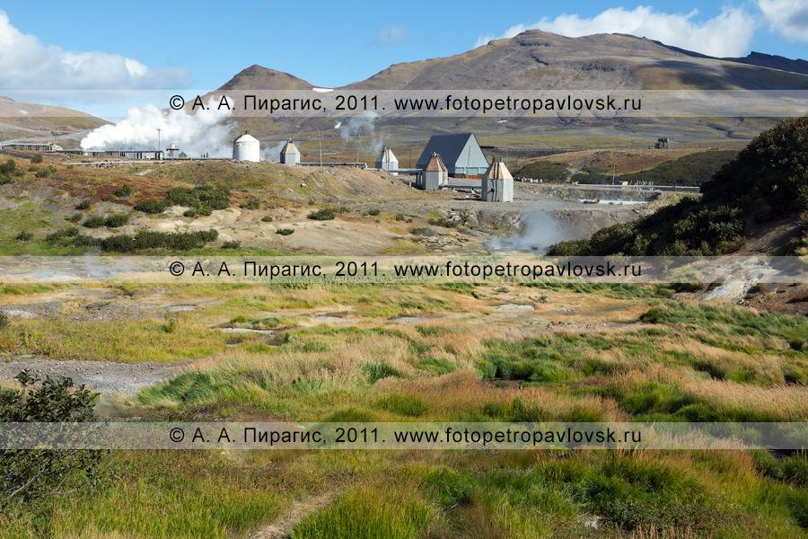 Фотография: Дачные термальные источники на Камчатке. Медвежья группа Дачных термальных источников на Камчатке