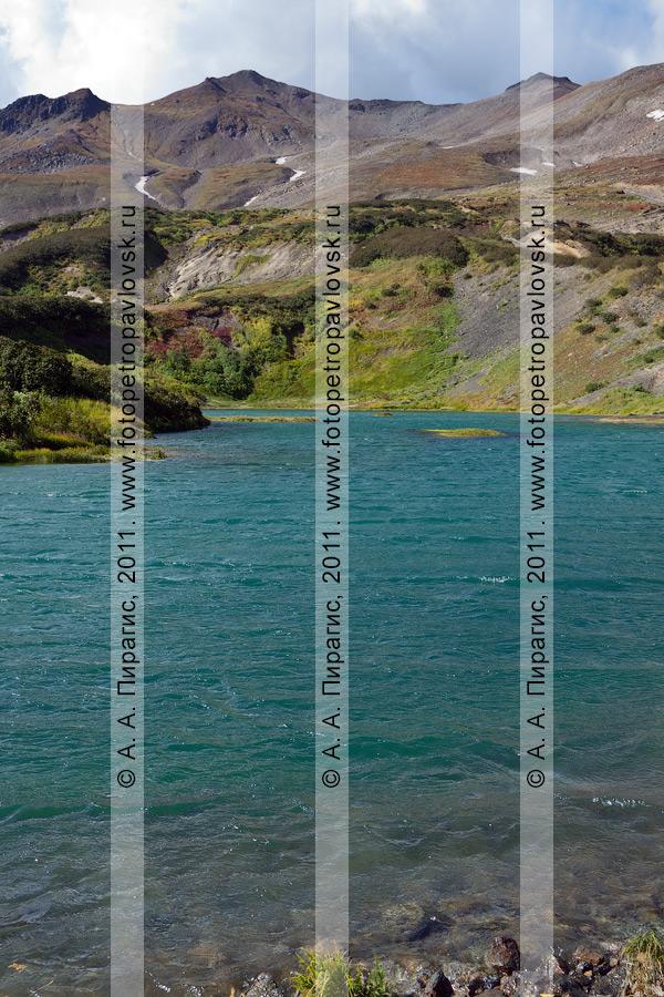 Фотография: Дачные термальные источники на Камчатке. Утиная группа Дачных термальных источников, затопленная в результате освоения Мутновского геотермального месторождения