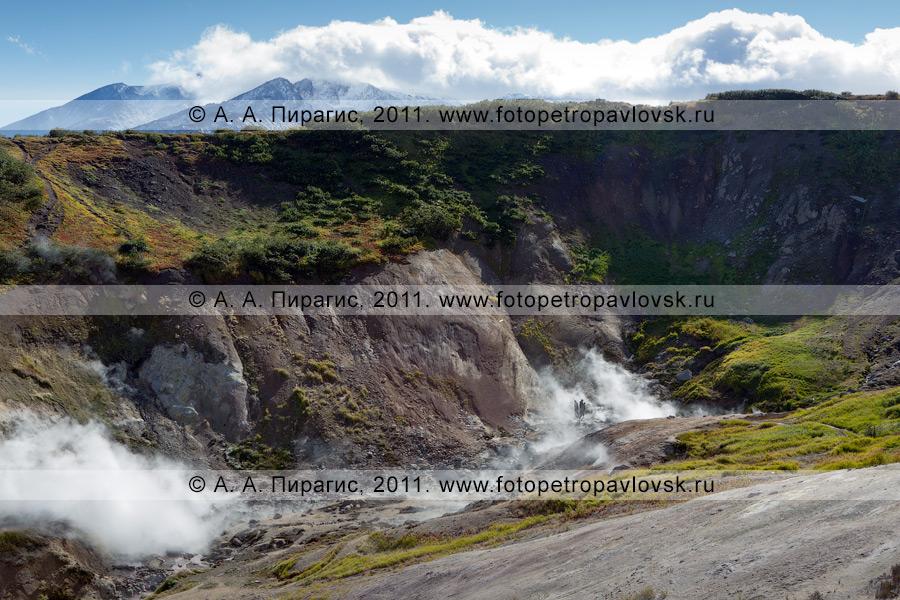 Фотография: Дачные термальные источники, Активная группа Дачных термальных источников. Полуостров Камчатка