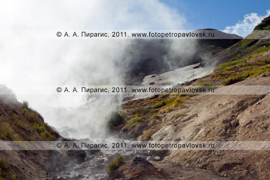 Фотография: Дачные термальные источники на полуострове Камчатка, Активная группа Дачных термальных источников