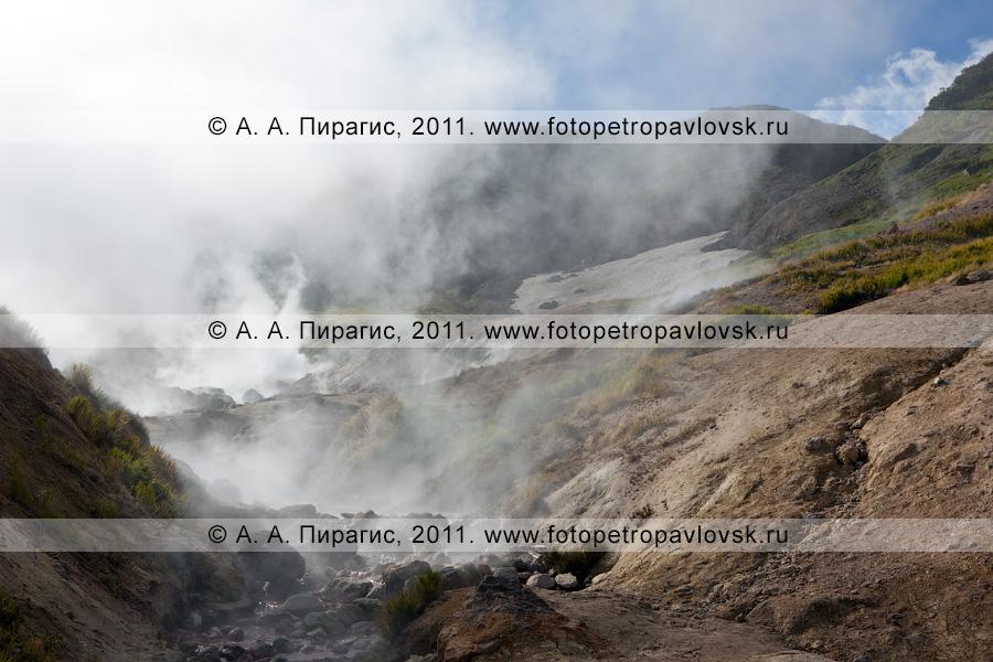 Фотография: Активная группа Дачных термальных источников. Камчатский край