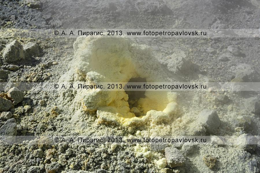 Фотография: выход серы на фумарольном поле в кратере Мутновского вулкана (Mutnovsky Volcano) на полуострове Камчатка