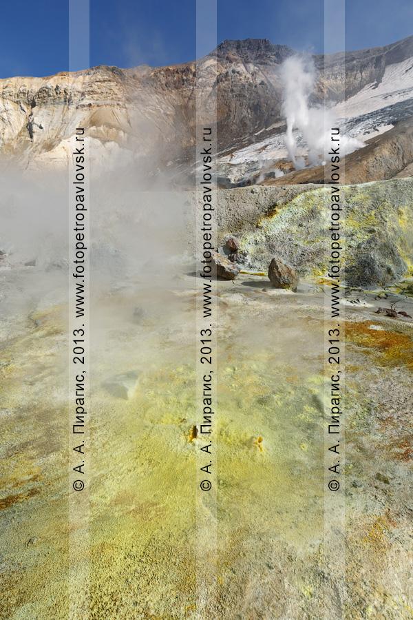 Фотография: выход серы на фумарольном поле в кратере вулкана Мутновская сопка (Mutnovskaya Sopka) на полуострове Камчатка