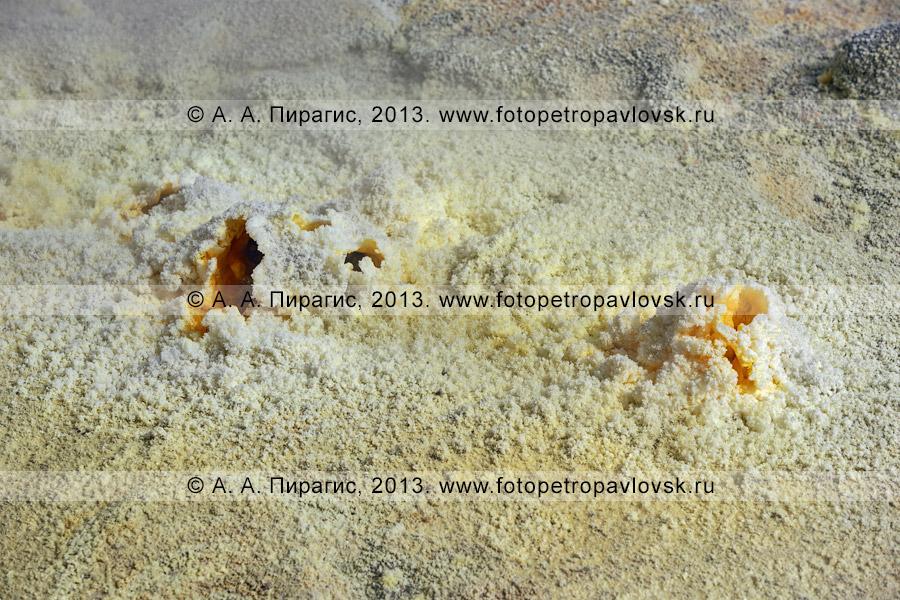 Фотография: выход серы, фумарольное поле в кратере вулкана Мутновская сопка (Mutnovskaya Sopka) на Камчатке