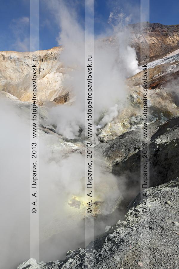 Фотография: кратер Мутновского вулкана (Mutnovsky Volcano), газогидротермальная деятельность камчатского вулкана