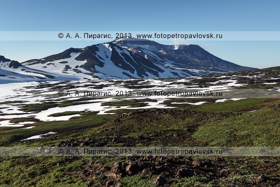 Фотография: камчатский пейзаж — вид на вулкан Мутновский — активный (действующий) камчатский вулкан