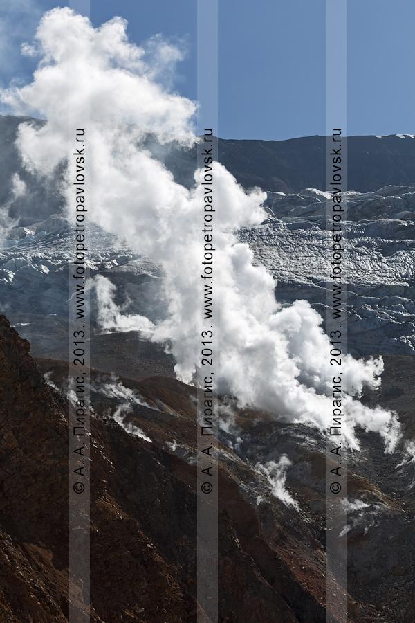 Фотография: работа фумарол в кратере Мутновского вулкана (Mutnovsky Volcano) на полуострове Камчатка