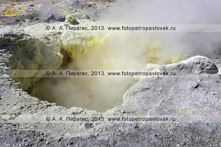 Фотография: серный котел на фумарольном поле в кратере Мутновского вулкана (Mutnovsky Volcano) на Камчатке