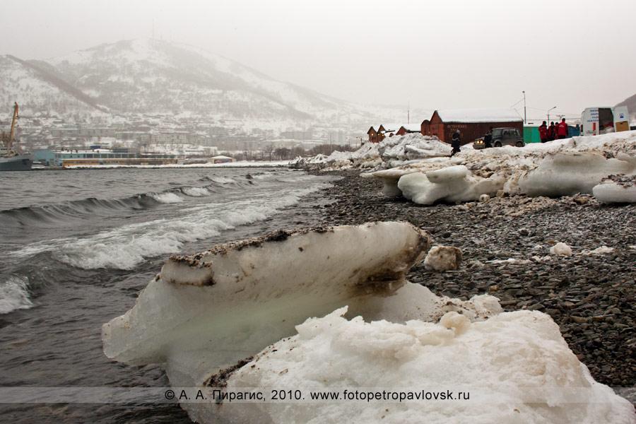 Фотография: прибрежная полоса Авачинской губы в Петропавловске-Камчатском загрязненная нефтепродуктами