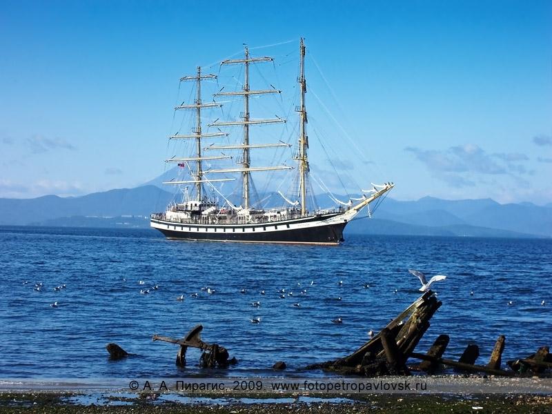 """Фотография: парусный фрегат """"Паллада"""" (порт приписки Владивосток)"""