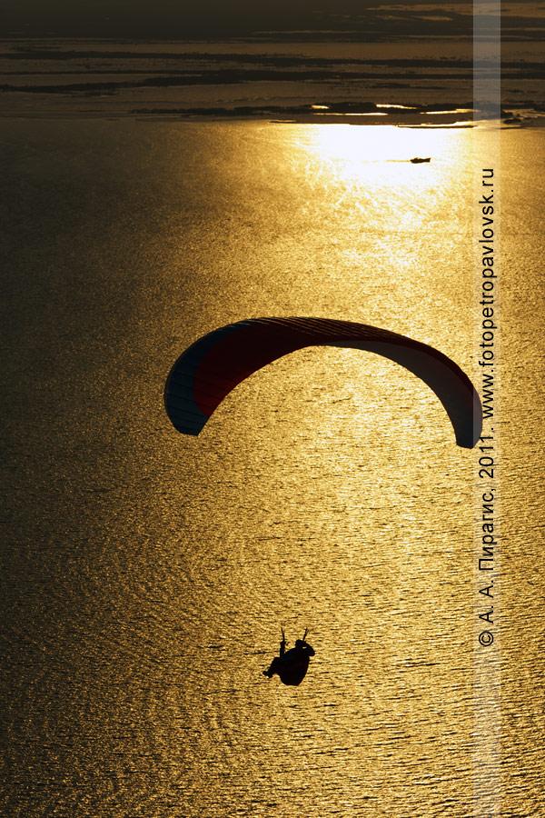 Фотография: камчатский парапланерист парит над Авачинской губой (бухтой)